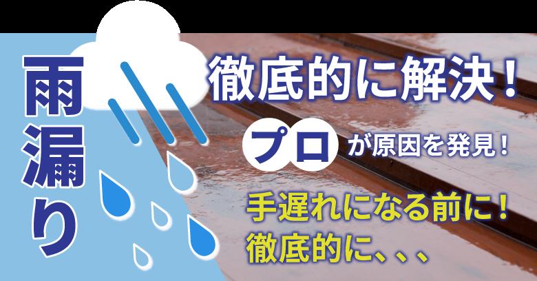 雨漏りの問題を徹底的に解決!プロが原因を発見!手遅れになる前に徹底的に診断いたします。